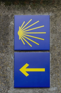 Saint james way directional signs scallop shell and yellow arrow over a blue background. Way markers of camino de santiago placed on a stone wall.